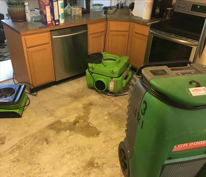 3 pieces of green drying equipment in a kitchen