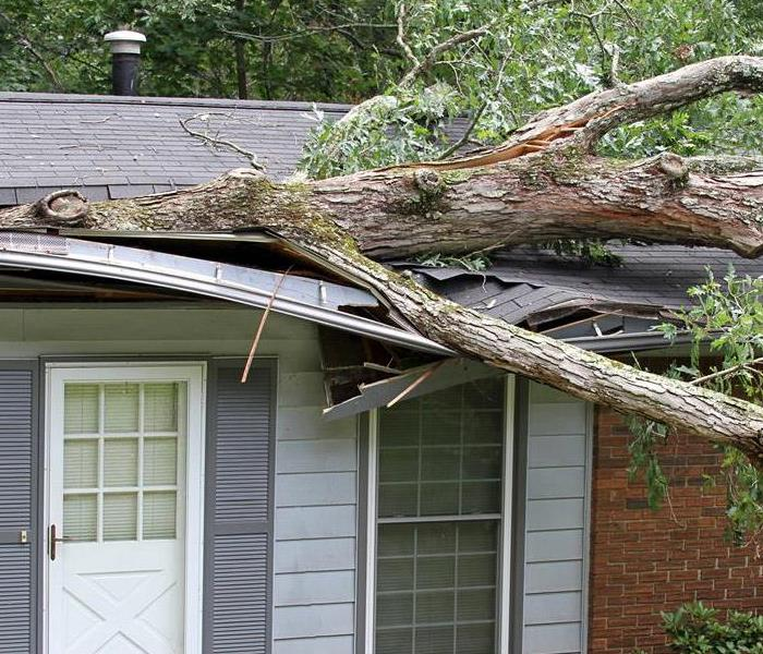 Storm Damage Tips on Timely Storm Damage Remediation