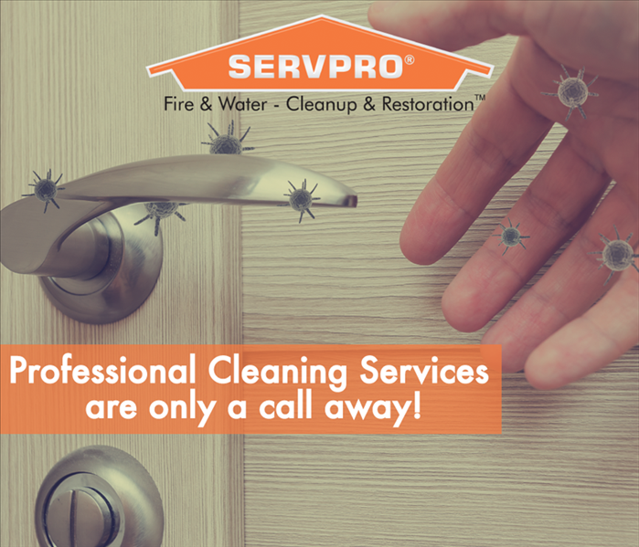 a graphic that says professional cleaning is only one call away