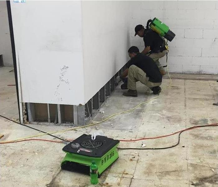 Mold Remediation 5 Steps of the Mold Mitigation Process