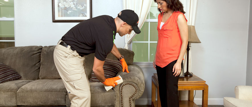 Providence, RI carpet upholstery cleaning