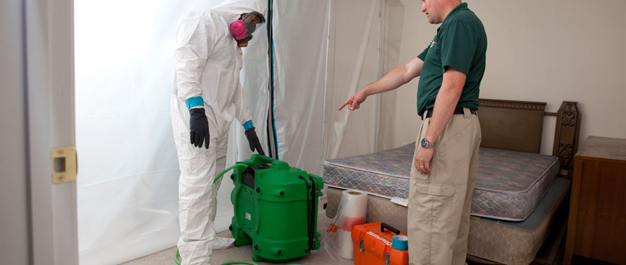 Providence, RI mold removal process
